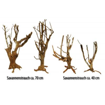 """Buisson branche """"Savannah bush"""" de Lucky reptile"""