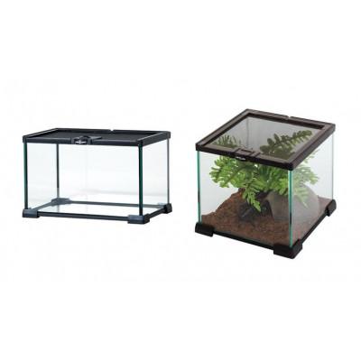 """Terrariums en verre petites tailles """"Mini glass"""" de Reptizoo"""