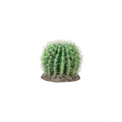"Plante ""cactus Sonora"" de Hobby"