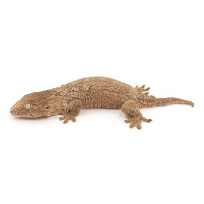 "Rhacodactylus leachianus ""Nuu Ana"""