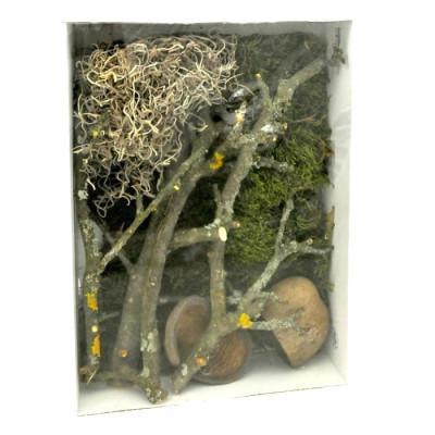 """Mélange de décors naturels pour terrarium tropical """"Deco set jungle"""" Lucky reptile"""