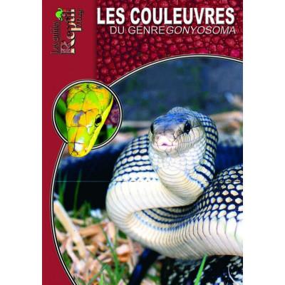 Les couleuvres du genre Gonyosoma - Les guides Reptilmag