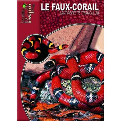 Le faux-corail - Lampropeltis triangulum - Les guides Reptilmag