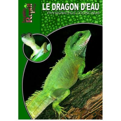 Le dragon d'eau - Physignathus cocincinus - Les guides Reptilmag