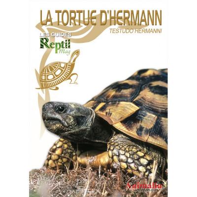 La tortue d'Hermann - Testudo hermanni - Les guides Reptilmag