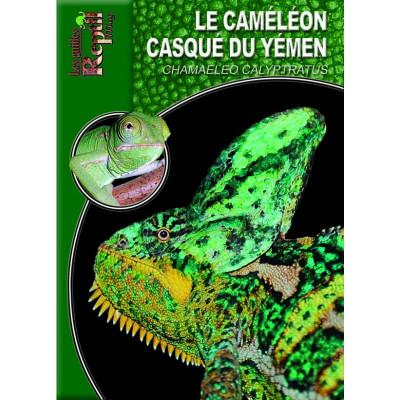 Le caméléon casqué du Yemen - Chamaeleo calyptratus - Les guides Reptilmag