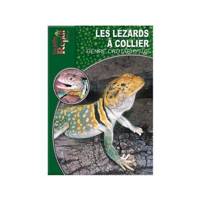Le lézard à collier - Crotaphytus collaris - Les guides Reptilmag