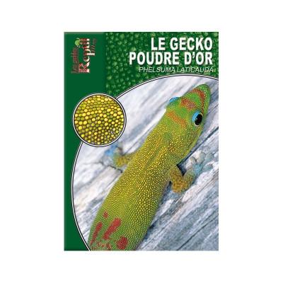 Le gecko poussière d'or - Phelsuma laticauda - Les guides Reptilmag