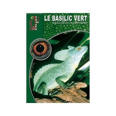 Le basilic vert - Basiliscus plumifrons - Les guides Reptilmag