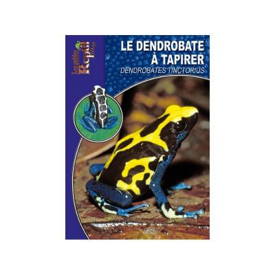 La dendrobate à tapirer - Dendrobates tinctorius - Les guides Reptilmag
