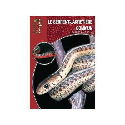 Le serpent jarretière commun - Thamnophis sirtalis - Les guides Reptilmag