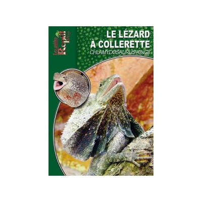 Le lézard à collerette - Chlamydosaurus kingii - Les guides Reptilmag