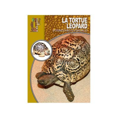 La tortue léopard - Stigmochelys pardalis - Les guides Reptilmag