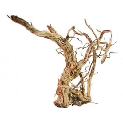 """Racine """"legno dragon skin"""" Reptizoo"""