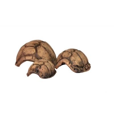 Carapace de tortue en céramique