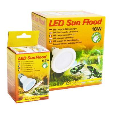 LED Sun Flood de Lucky reptile