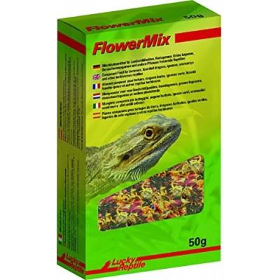 """Mélange de fleurs """"Flower mix"""" de Lucky reptile"""