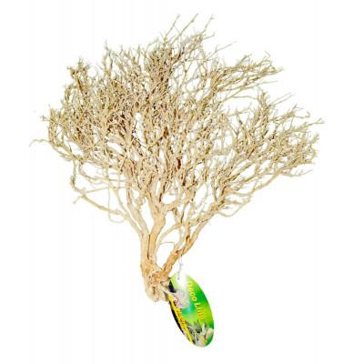 "Buisson du désert blanchi ""Desert bush"" de Lucky reptile"