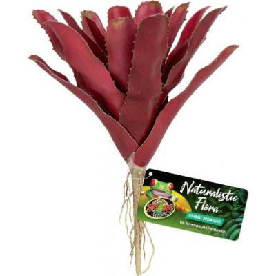 """Broméliacée rouge """"Fireball Bromeliad"""" de Zoomed"""