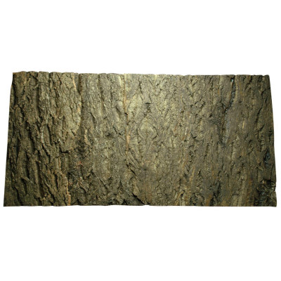 "Plaque de liège naturel 'Cork background"" de Lucky reptile"