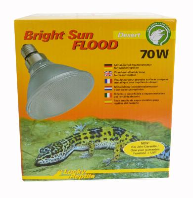 Bright Sun UV Flood Desert de Lucky reptile