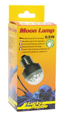 Moon lamp Lucky reptile