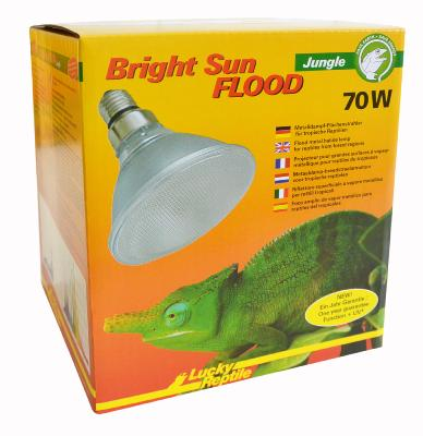 Bright Sun UV Flood Jungle de Lucky reptile