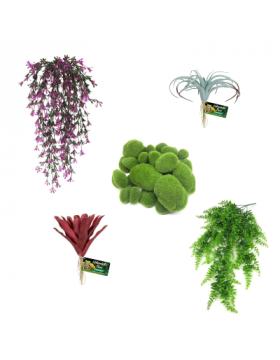 Plantes aritificielles - Reptilis
