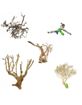 Racines, branches, souches, lianes - Reptilis
