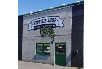 Reptilis Shop